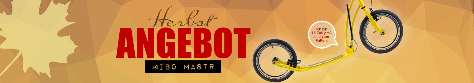 Anbeot Mibo Mastr inkl. Schutzblech-Set